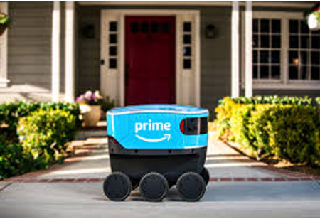 Autonomous Scout Delivery to Boost e-Commerce Players