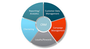 Integrating CRM and CDP Systems